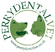 perry-dental-logo